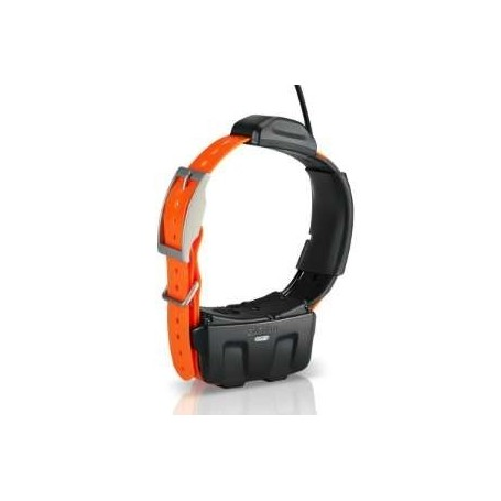 Collar Garmin DC-50